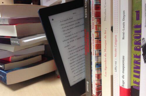 Article : Livre papier, plus charmant que livre numérique